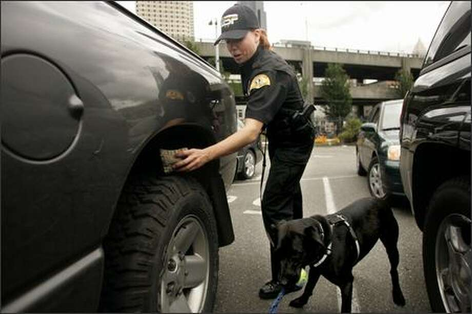 State Patrol K-9 handler Samantha Pratt removes a scented bag from the wheel of a car at a Seattle ferry dock where she hid it Thursday to test Betsy. The search dog found it. Photo: Mike Kane/P-I