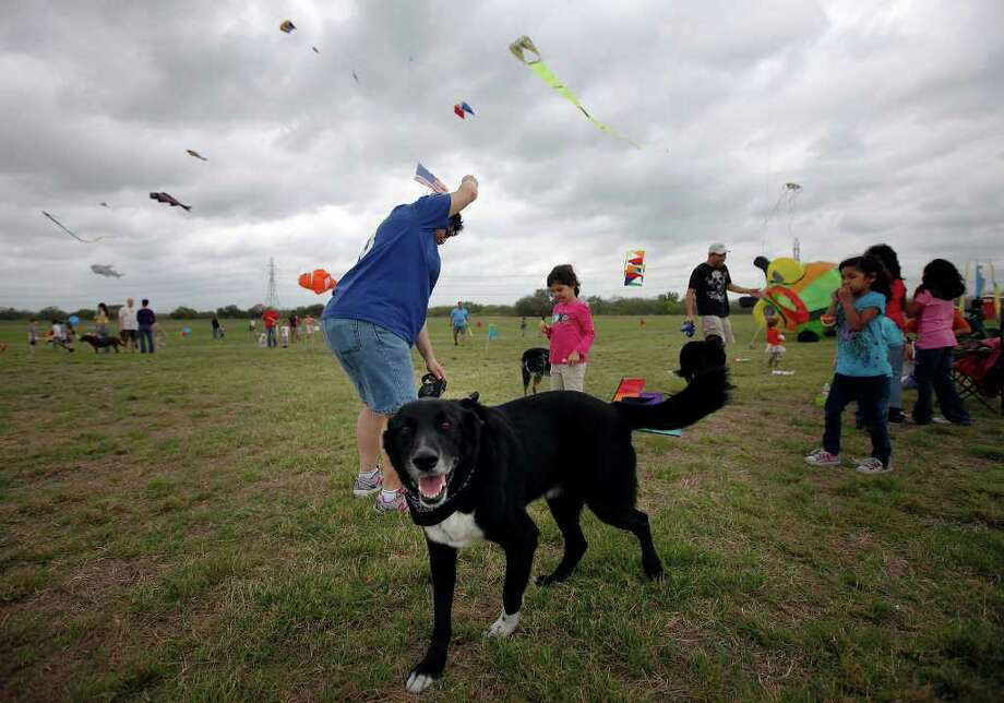 "Jackson (foreground) enjoys a day at the park with owner Janie Flores (left) and her family as the attend ""Fest of Tails"" hosted by Friends of the Parks at McAllister Park on Saturday, Mar. 19, 2011. The event featured a pooch parade and concluded with the flying of kites. Proceeds from the event went to the organization which works to ""expand, enhance and protect San Antonio parks."" Kin Man Hui/kmhui@express-news.net Photo: KIN MAN HUI, Kin Man Hui/kmhui@express-news.net / San Antonio Express-News"
