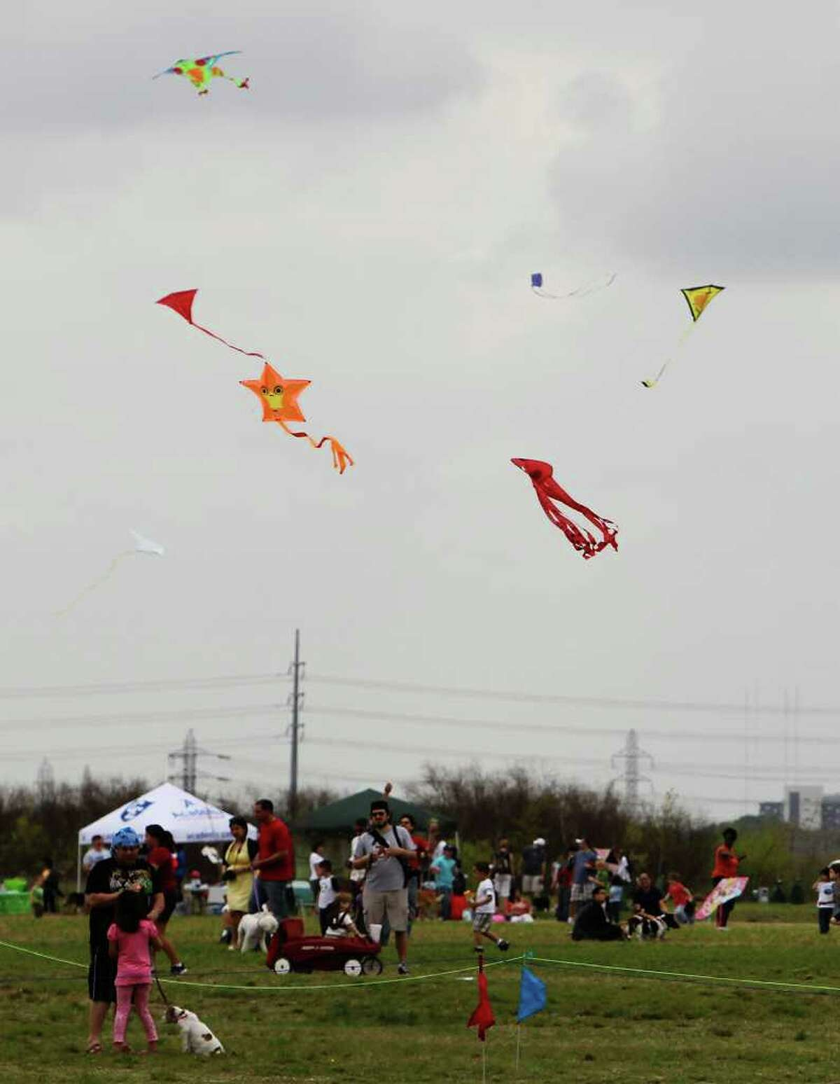 Kites swirls around in the breeze during