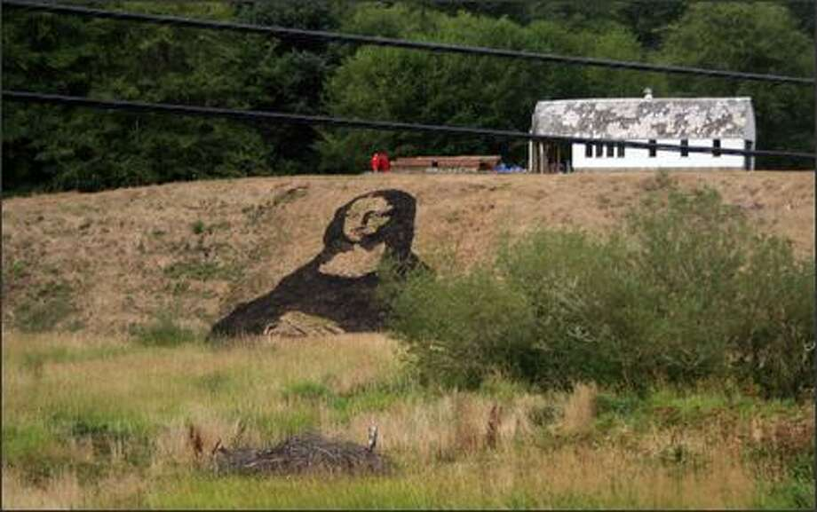 "A stenciled painting of the ""Mona Lisa"" by artist Samuel Clemens adorns a hillside in Toledo, Ore. Photo: / Associated Press"