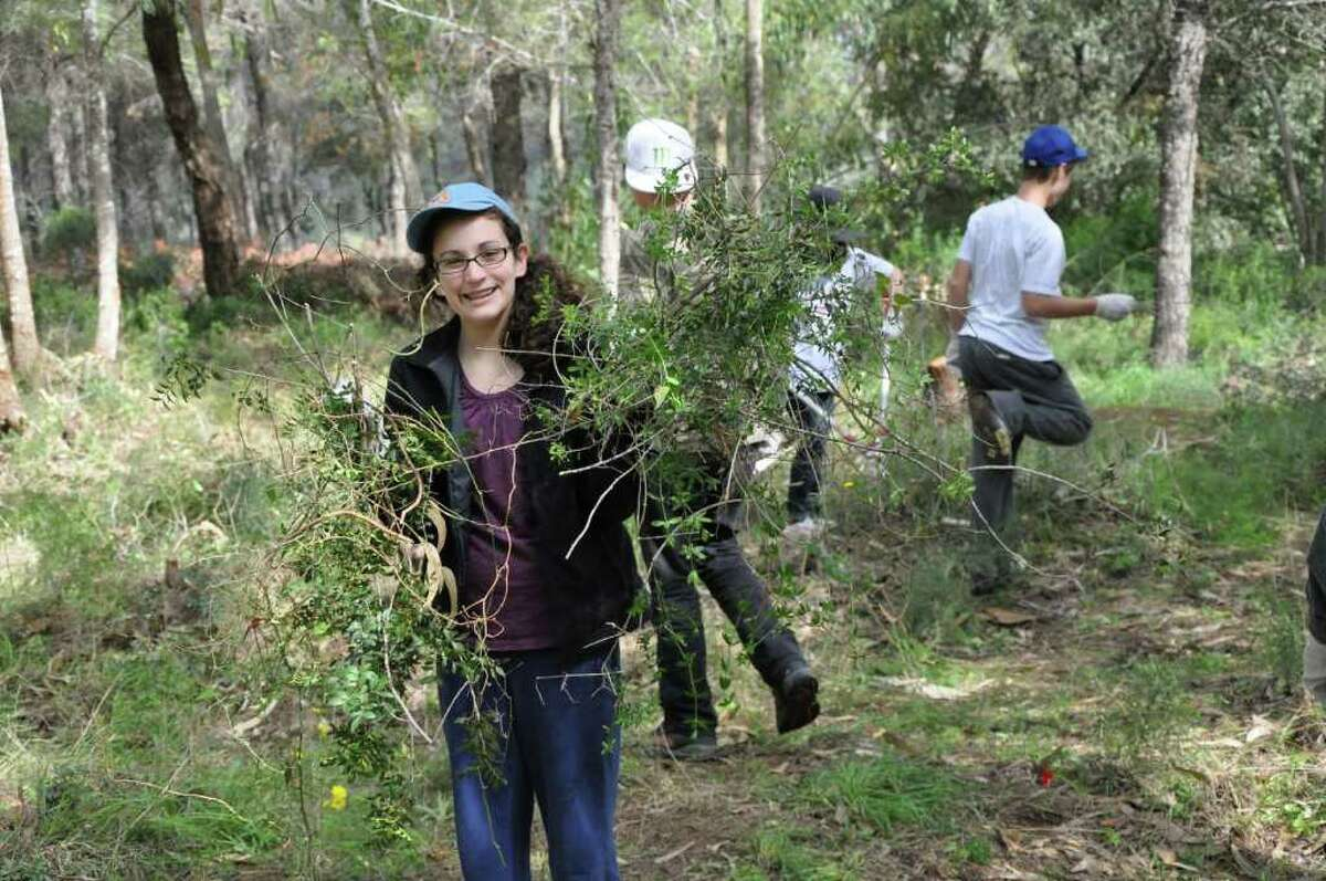 Supervised by forestry experts, Lauren Schechter and her classmates at Bi-Cultural Day School cleared thorny underbrush in the Carmel Forest in Israel as part of their volunteer effort which included helping to reduce future forest fire danger in the region severely damaged by wildfires earlier this winter.