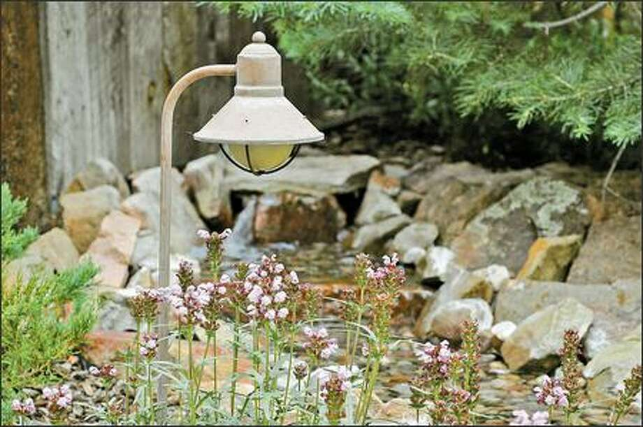 Outdoor lighting can accent a special tree or the whole garden. Photo: DIY NETWORK