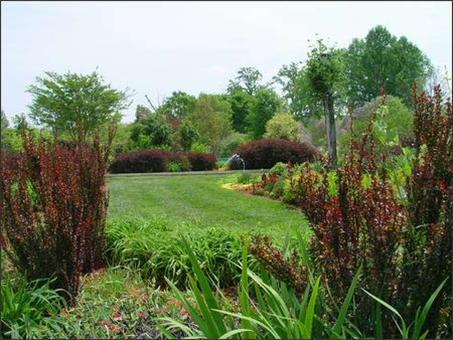 Barberries add interest to all-green gardens. Photo: / Scripps Howard News Service