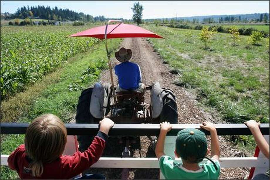 Evert Broderick gives a hayride at The South 47 Farm. In the front seats are River King, 6, left, of Goldbar and Ethan Crawford, 3, of Seattle. Photo: Meryl Schenker/Seattle Post-Intelligencer