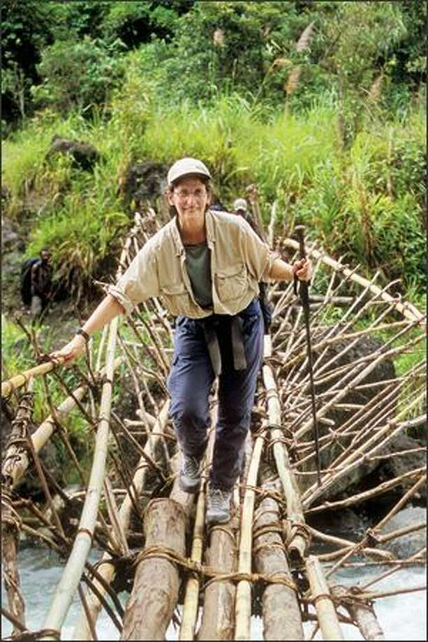 "Lisa Dabek crosses a bridge made of saplings on a trek to a remote cloud forest in Papua New Guinea. She's known as the ""Jane Goodall of tree kangaroos."" (NIC BISHOP) Photo: /"