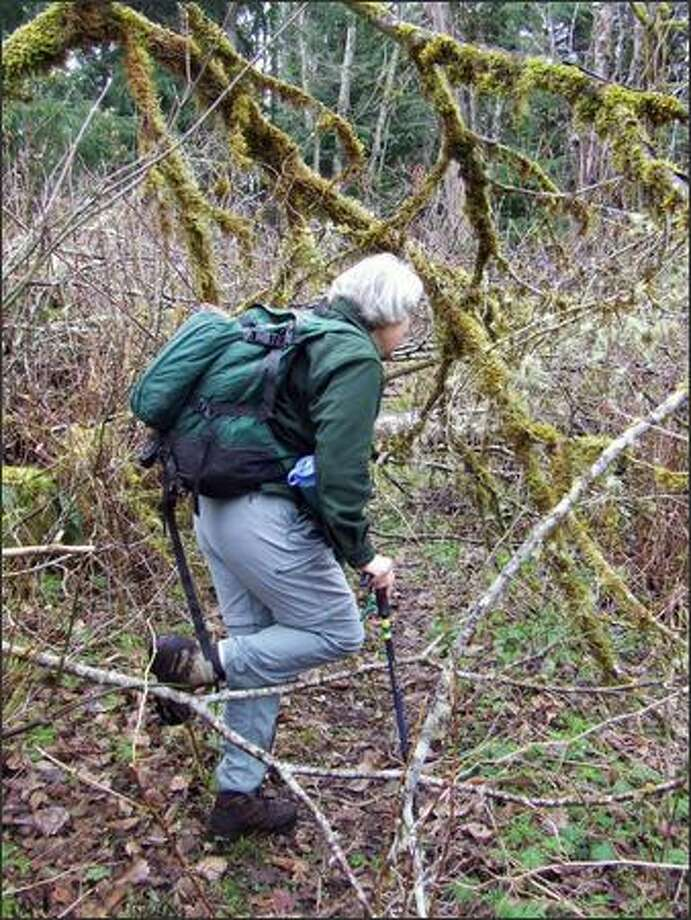 Kathy Kelleher hikes one of Echo Mountain's secondary trails. Photo: KAREN SYKES