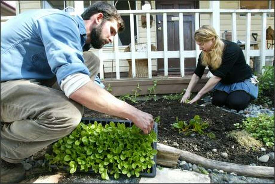 Colin McCrate, owner of Seattle Urban Farm Co., helps Megan Haas get a kitchen garden started in front of her Central District home Thursday. Photo: Paul Joseph Brown/Seattle Post-Intelligencer
