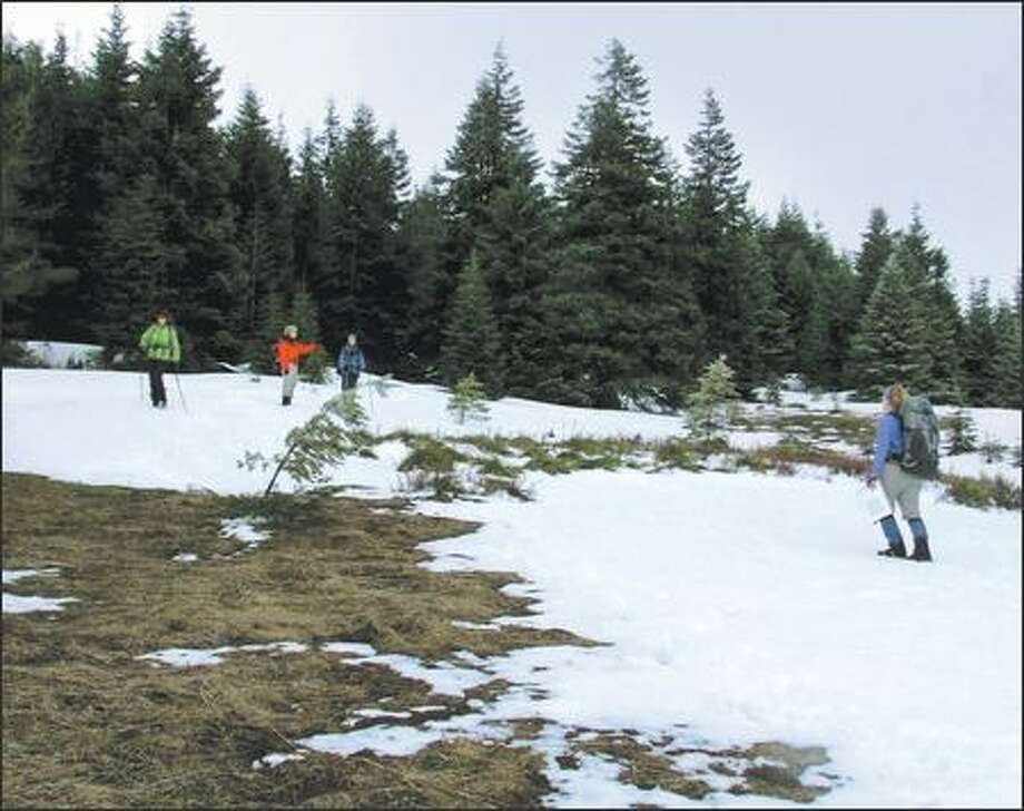 After 2,700 feet of elevation gain, the trail was lost under snow. Photo: Karen Sykes/Special To The Post-Intelligencer