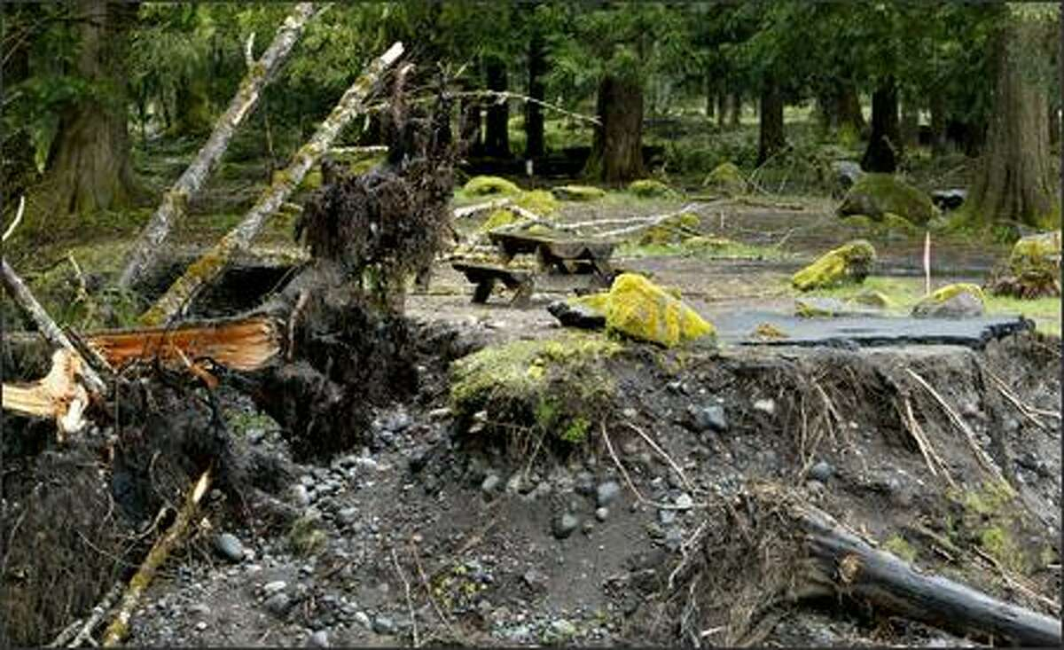 In last fall's storms, the Nisqually River breached levees and tossed trees and boulders onto much of the Sunshine Point campsite.