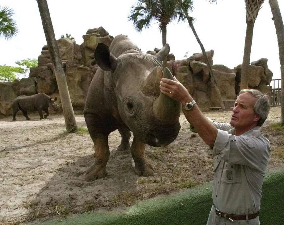 In this May 10, 2000 file photo, Nationally recognized animal expert Jack Hanna grabs the tusk of a black rhino. The Associated Press. Photo: CHRIS O'MEARA, STF / AP2000