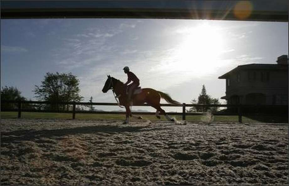 Staff jockey Scott Saito works out a Thoroughbred at Pegasus Equine Rehabilitation and Training center, which features a five-furling track, a pool and indoor arena. Photo: Meryl Schenker/Seattle Post-Intelligencer