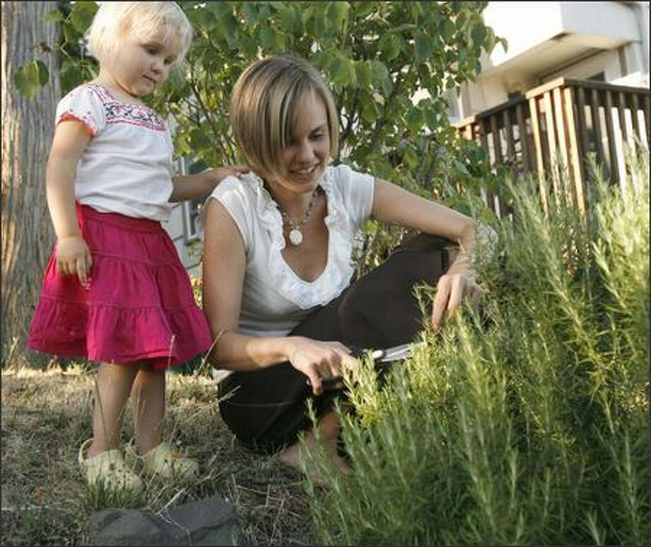 "Melissa Larson and her daughter, Chloe, 2, cut rosemary in their front yard. Larson and her family are trying to follow the ""100 Mile Diet"" -- they won't eat food grown more than 100 miles from their home. Photo: Grant M. Haller/Seattle Post-Intelligencer"