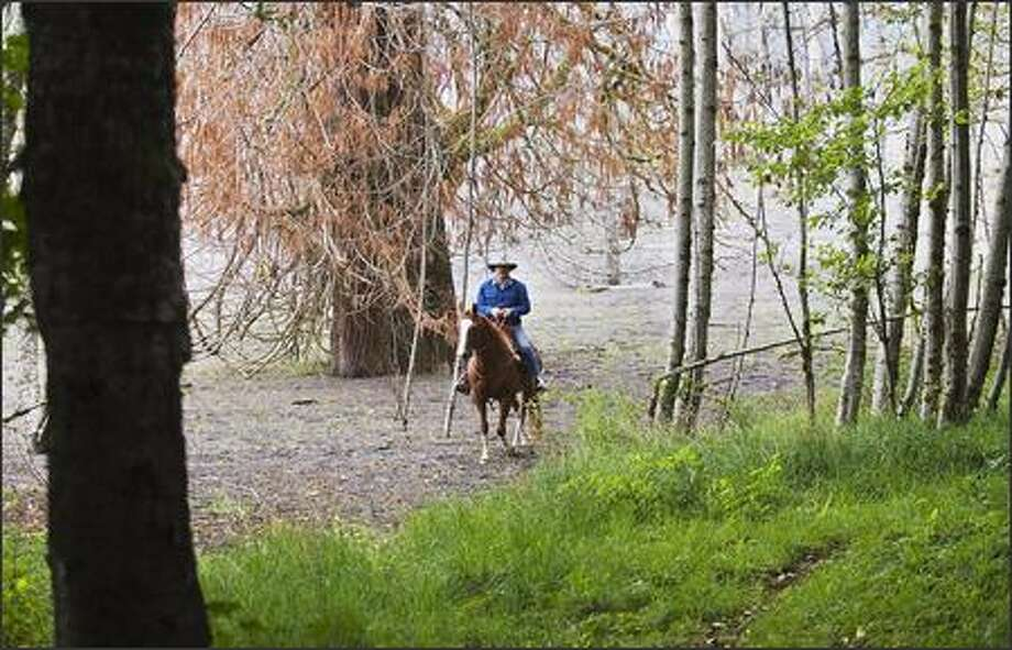 Mark Smith and his horse Wrangler ride along the path of the 1980 mudflow on the North Fork of the Toutle River where he often leads groups from his Eco Park Resort. Photo: Bill Wagner