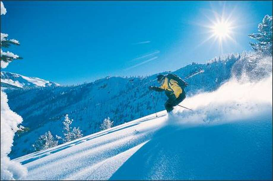 A skier cruises through Rocky Mountain powder at Panorama ski area in eastern British Columbia. Photo: Anorama Mountain
