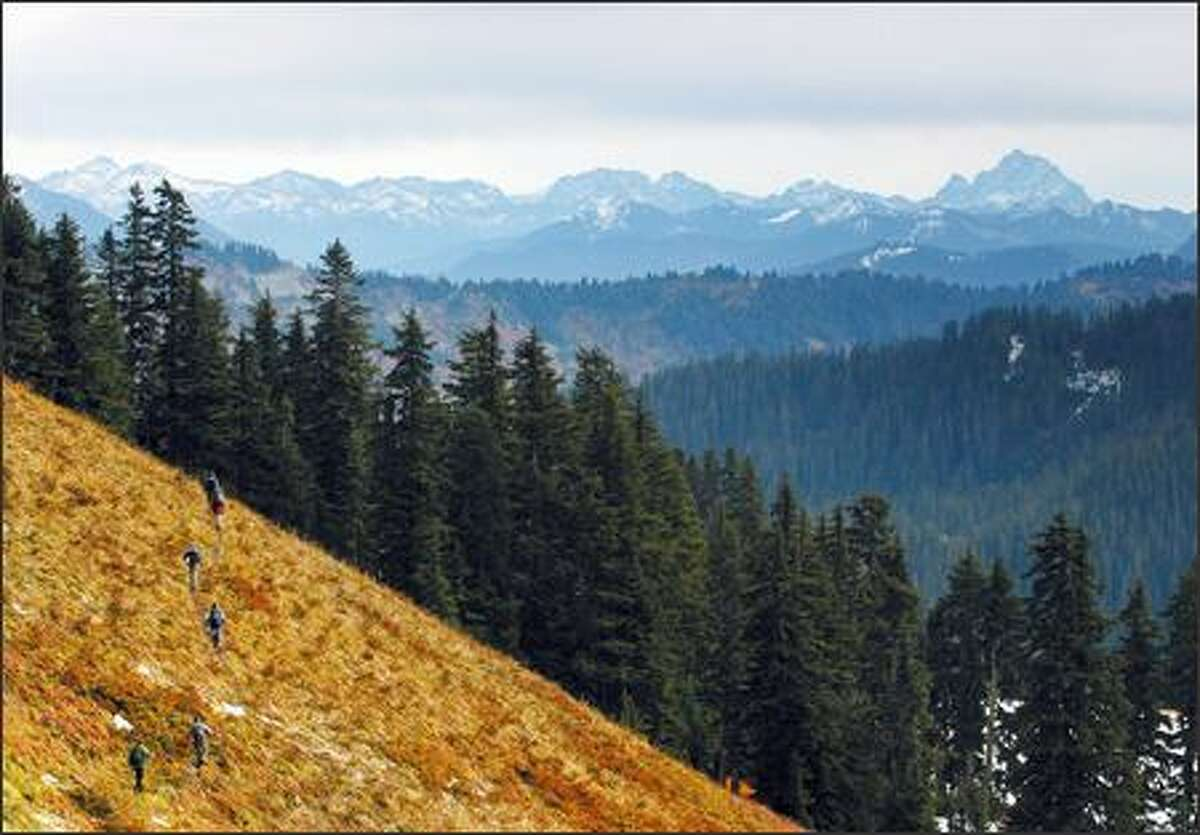 Hikers make their way along Johnson Ridge Trail in the eastern portion of the proposed Wild Sky Wilderness, an area marked by open meadows and mixed fir and hemlock forests.