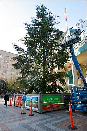 Westlake s Charlie Brown tree draws criticism