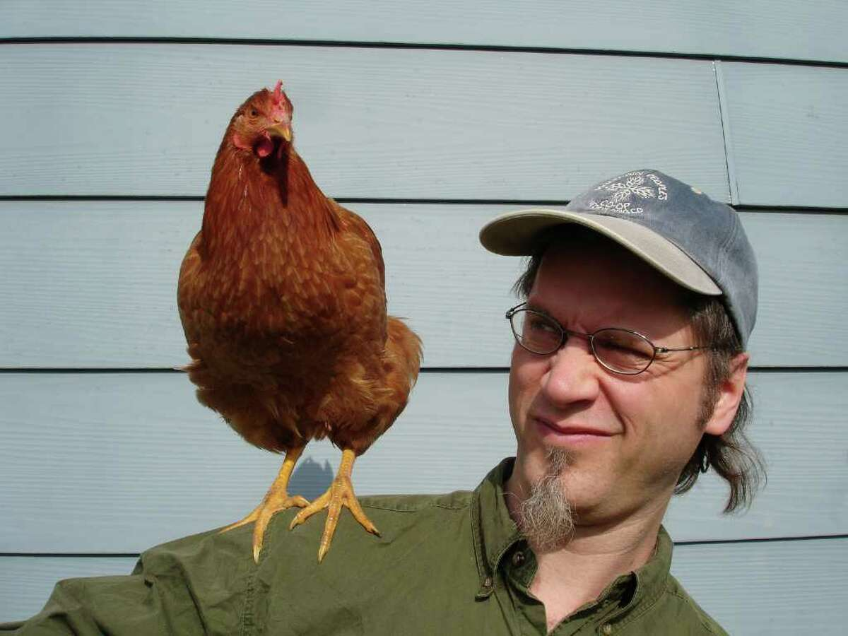 Co-director Robert Lughai offers a shoulder for one of the stars of 'Mad City Chickens.' This 2008 documentary will be screened at the Audubon Greenwich, Sunday, March 27. Contributed photo/Tashai Lovington.