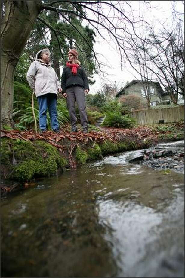 Judy Pickens, left, a Fauntleroy neighborhood environmental activist, and Katherine Lynch, an environmental analyst and watershed ecologist with Seattle Public Utilities, inspect Fauntleroy Creek, which a new report shows often exceeds state standards for fecal coliform bacteria. The creek flows by Pickens' house, at right, and empties into Puget Sound south of the Vashon ferry dock. Photo: Paul Joseph Brown/Seattle Post-Intelligencer