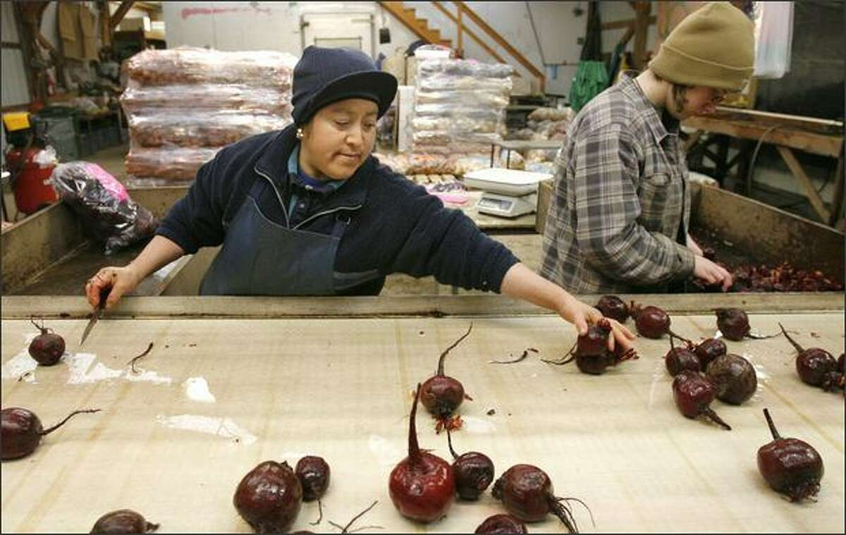 Raina Gomez, left, and Kelly Roake clean and cut fresh beets this month at Nash's Organic Produce. Getting locally produced farm products into nearby institutions is more difficult than it might seem.
