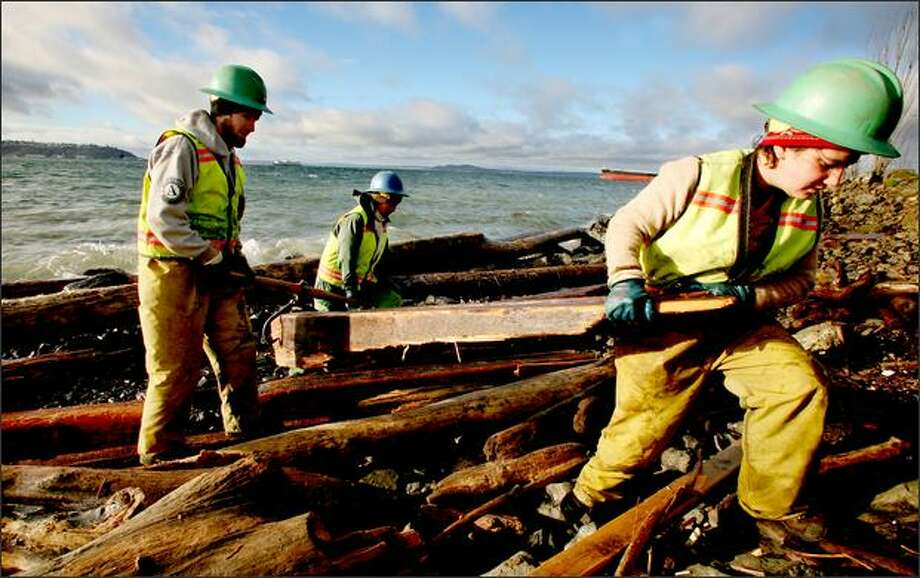 Earth Corps workers Catherine Kana, at right, and Brian Gilmore and Khangai Buyannnemekh, l-r background, clearing creosote treated pilings from a beach north of Olympic Sculpture Park on Friday. Photo: Paul Joseph Brown/Seattle Post-Intelligencer