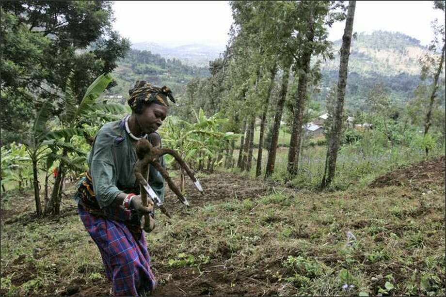 A woman works in a field in Ngiresi, near Arusha, Tanzania, in this file photo. The Bill & Melinda Gates Foundation is giving $306 million to help poor farmers, including smallholder farmers, most of whom are women. Photo: / Associated Press
