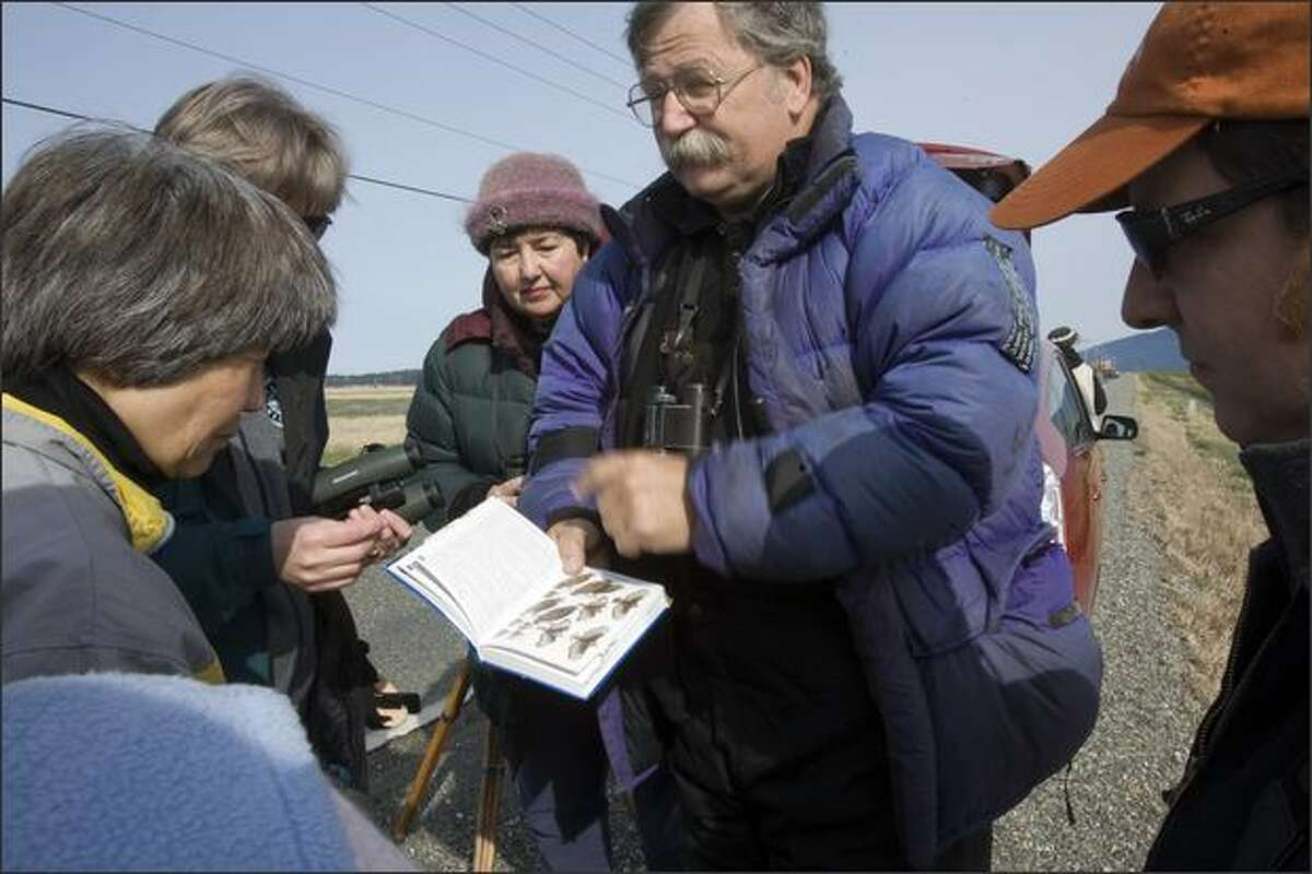 Bud Anderson, president of the Falcon Research Group, shows a page of falcon images to a group on a field trip on the Samish River delta. Anderson began seeing long-billed birds in the late 1990s.