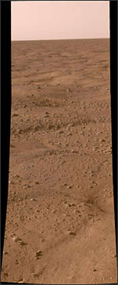Mars' surface as seen by the Phoenix Lander, which touched down Sunday. Photo: NASA