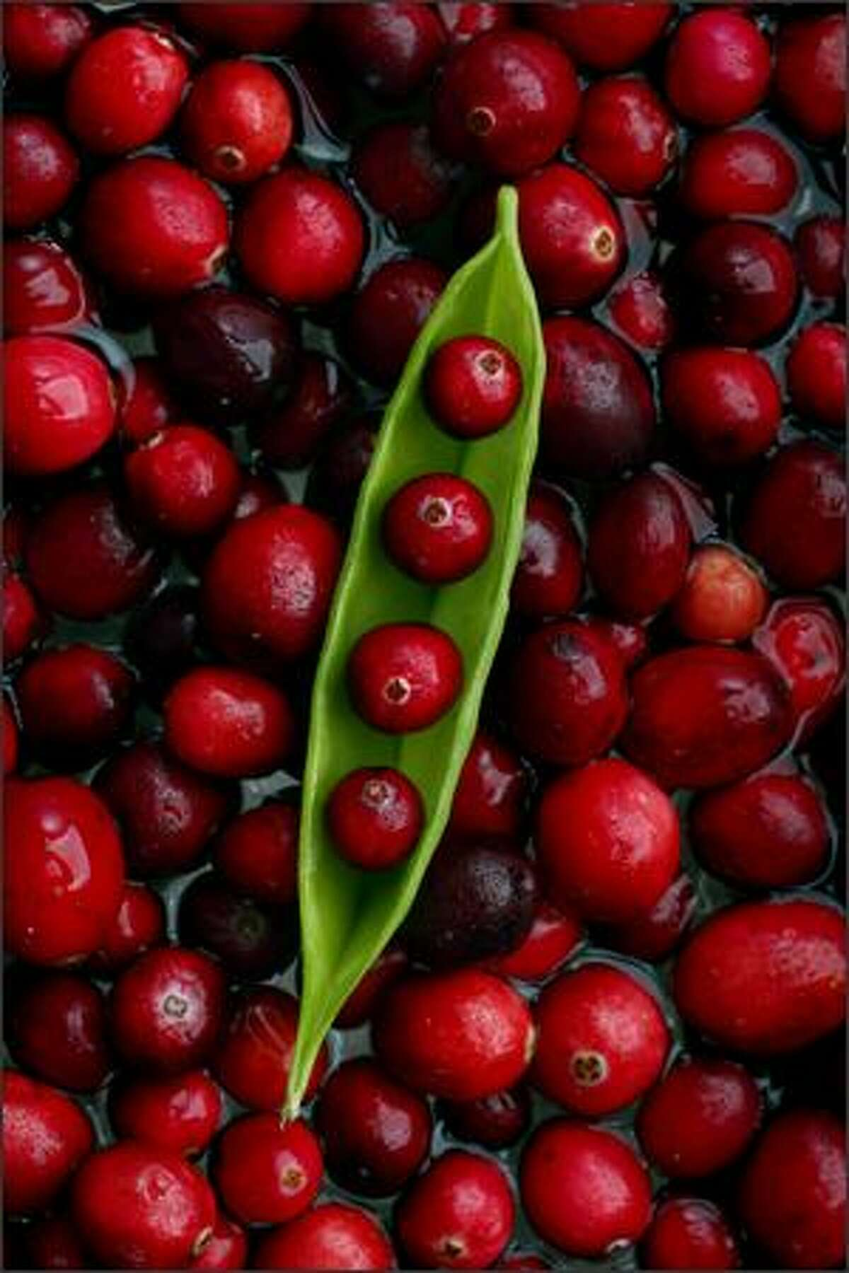 Cranberries can form the basis of cocktails, sauces or the essence of a sorbet.Rogers: I wanted to take a simple food portrait and add an unexpected twist. The pea pod idea occurred to me after I spied the peas while stocking up on cranberries for the shoot. My