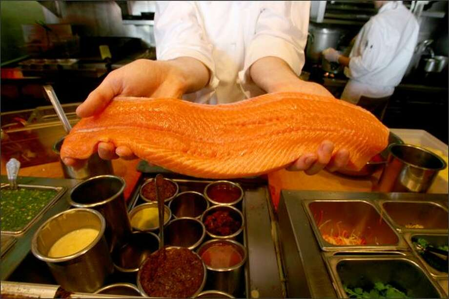 A large filet of Yukon River chum salmon is displayed at the Flying Fish restaurant. Despite its name, the fish is becoming well known for its high-quality meat and has been more available –- and less expensive –- than the prized Copper River and Yukon River king salmon. Photo: Scott Eklund/Seattle Post-Intelligencer