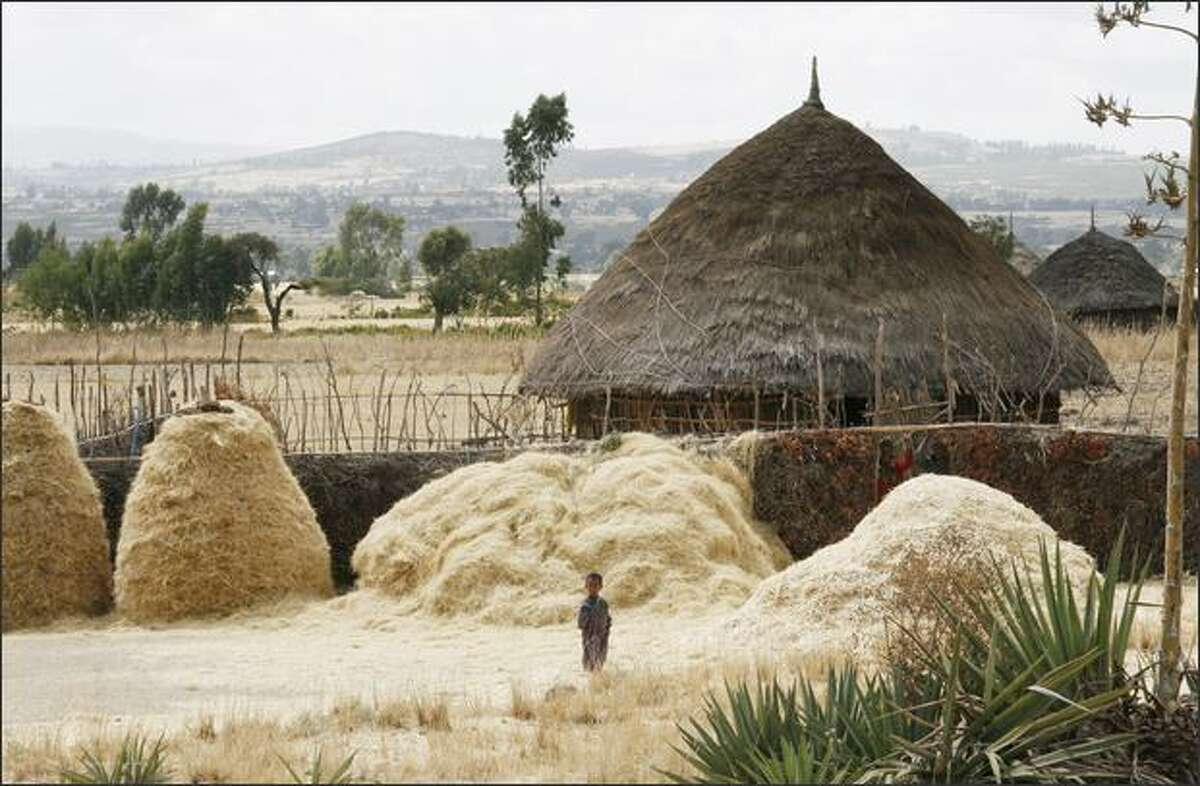 A child stands among hay stacks in Bishikiltu. Eighty to Eight-five percent of Ethiopia lives in rural areas and depends on farming and agriculture for their survival. photos by Alex Stonehill