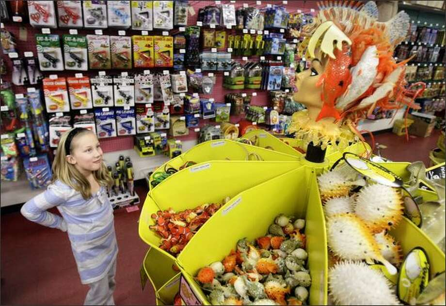 """Miya Waserekke, 9, checks out the """"fish woman"""" who tops a display of sea-themed toys at Archie McPhee in the Ballard neighborhood of Seattle. Photo: Andy Rogers, Seattle Post-Intelligencer"""