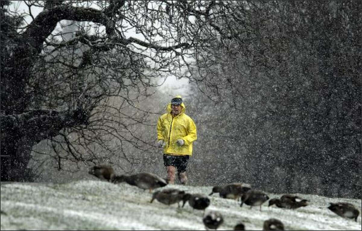 Steven Weston of Ballard braves the snow as he runs around Green Lake in Seattle. Weston, who runs half-marathons, said