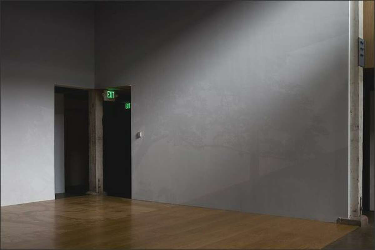 Look carefully at the wall and floor for Mary Temple's paintings in