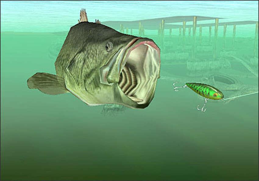 Bass Fishing Duel