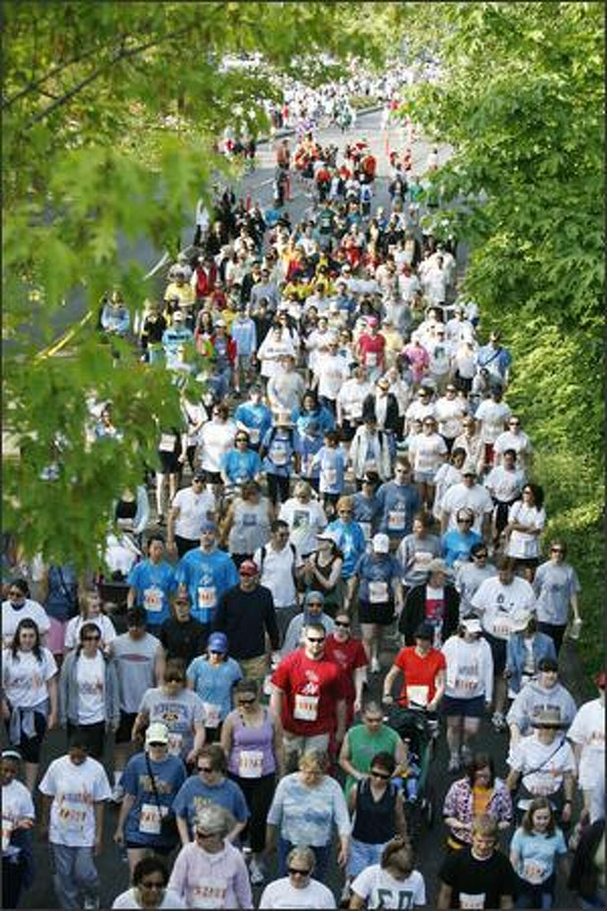 Participants in the Beat The Bridge 4-mile family walk fill Montlake Boulevard.