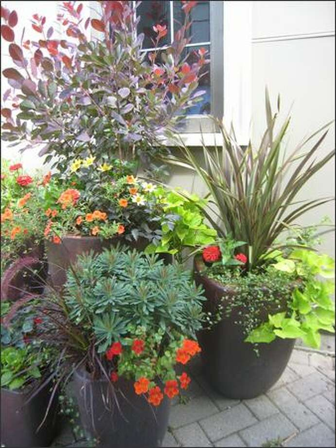 Susan Papanikolas and her clients will go plant and pot shopping together. Photo: Susan Papanikolas