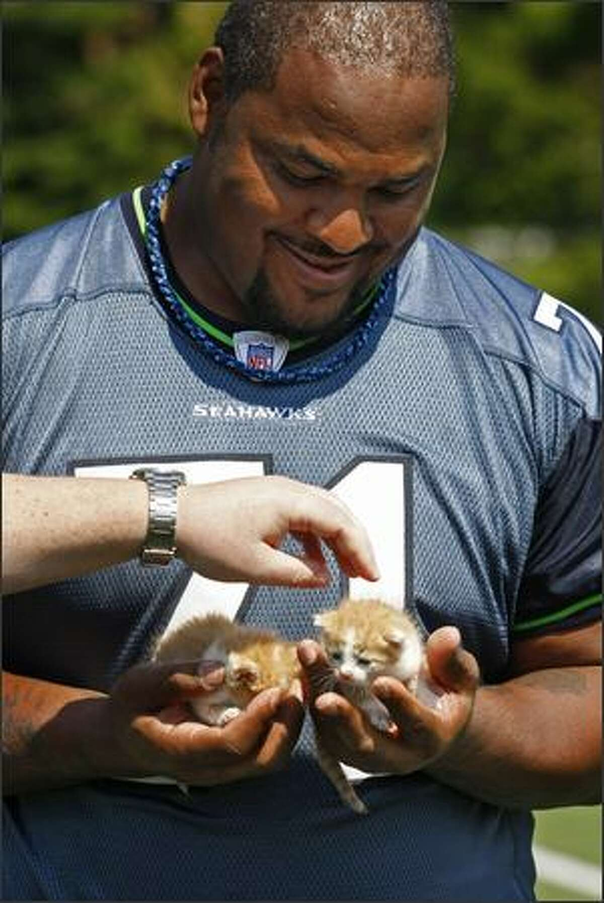 Offensive tackle Walter Jones is handed 3-week-old kittens Hurley and Halo in preparation for a photo shoot.