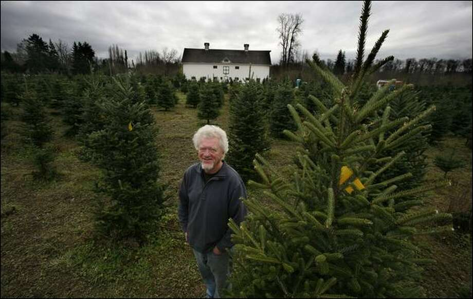 Family Christmas Tree Farms Offer Experiences That Can't