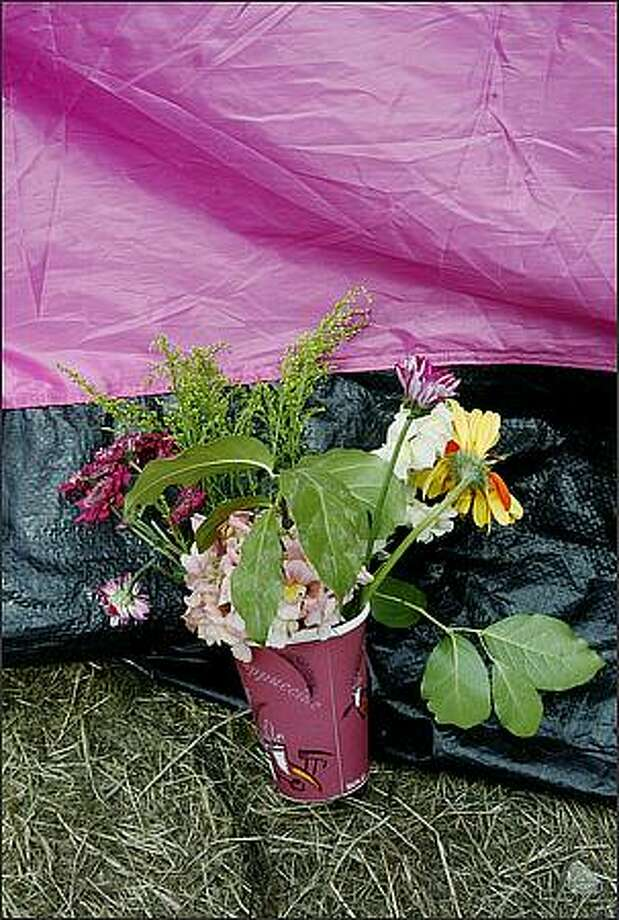 "A bouquet of flowers was left propped against one of the pink tents that made up the ""Nickelsville"" homeless encampment. Photo: Dan DeLong, Seattle Post-Intelligencer"