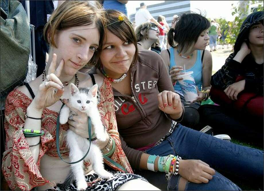 "Frosty, her cat Shmee, and friend Manik hang out with friends at Seattle Hempfest XVII at Myrtle Edwards Park on Saturday. The ""protestival"" continues through Sunday. Photo: Kristine Paulsen, Seattle Post-Intelligencer"