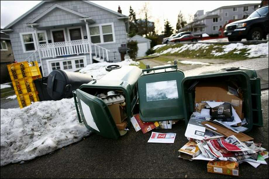 A windy Monday blows over garbage and recycling cans filled to the brim on Northeast 89th Street. The blustery day sent garbage flying around the city after the winter snowstorm put a stop to garbage collection. Garbage pickup is back on a regular schedule. Photo: Joshua Trujillo/Seattle Post-Intelligencer