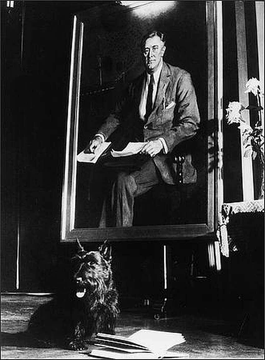 President Franklin D. Roosevelt's pet Scottish Terrier Fala sits beside an open book in front of a portrait of the president, 1940s. (Photo by Pictorial Parade/Getty Images)
