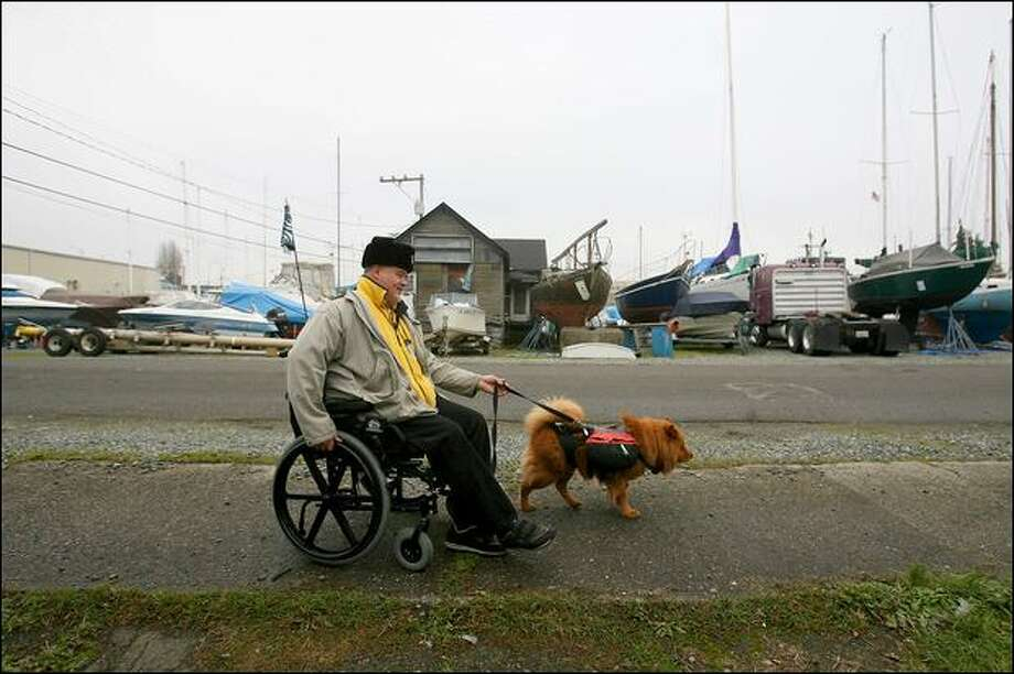Bill Owens, who lives in a houseboat at the South Park Marina, takes his service dog Honey Bear for a walk Tuesday across the street from the marina. After losing two service dogs from the same kind cancerous lymphoma in the past two years, Owens won't let Honey Bear swim in the Duwamish River or dig in the dirt. Photo: Scott Eklund/P-I