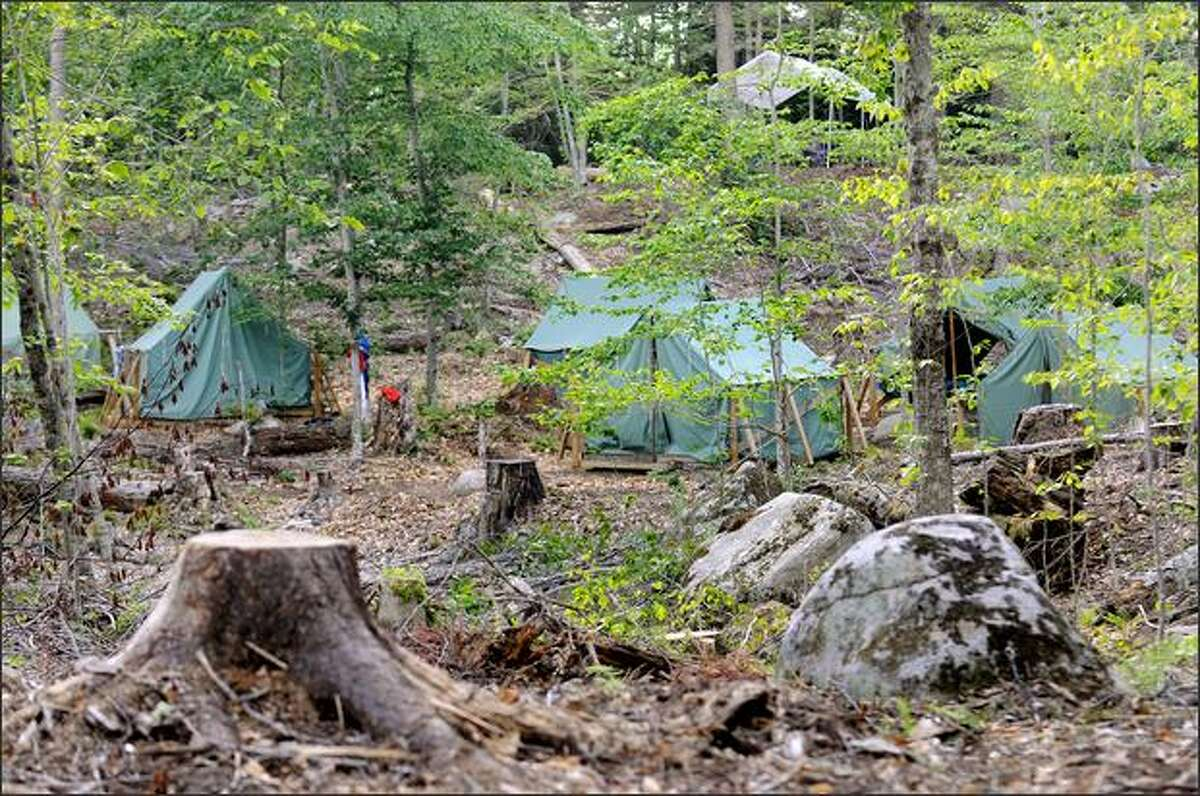 Tents are erected among fallen trees and stumps in July at the Apache campsite at Cedarlands Scout Reservation in Long Lake, N.Y. (Cindy Schultz)