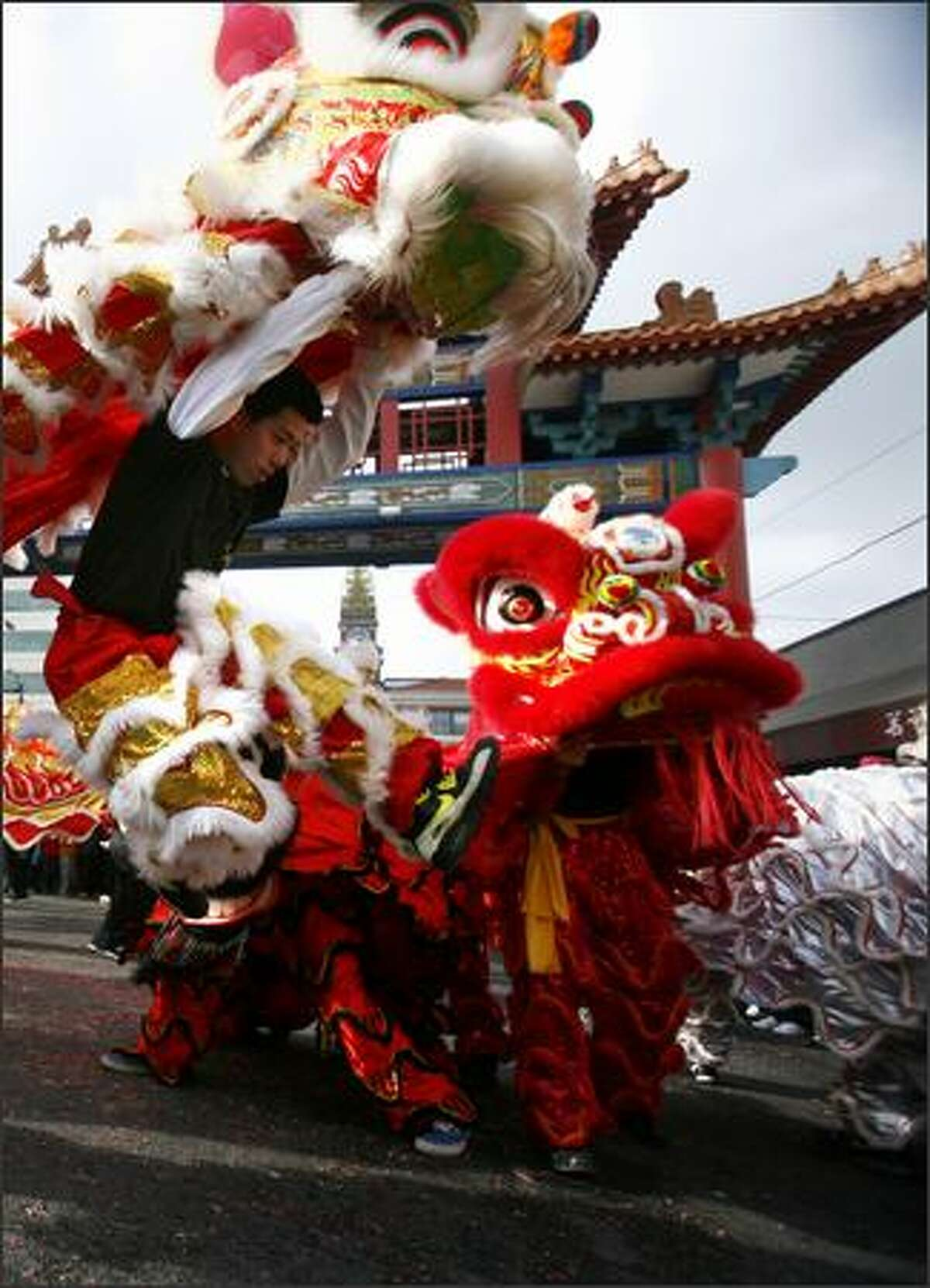 Members of the Mak Fai Washington Kung Fu Club perform a lion dance.