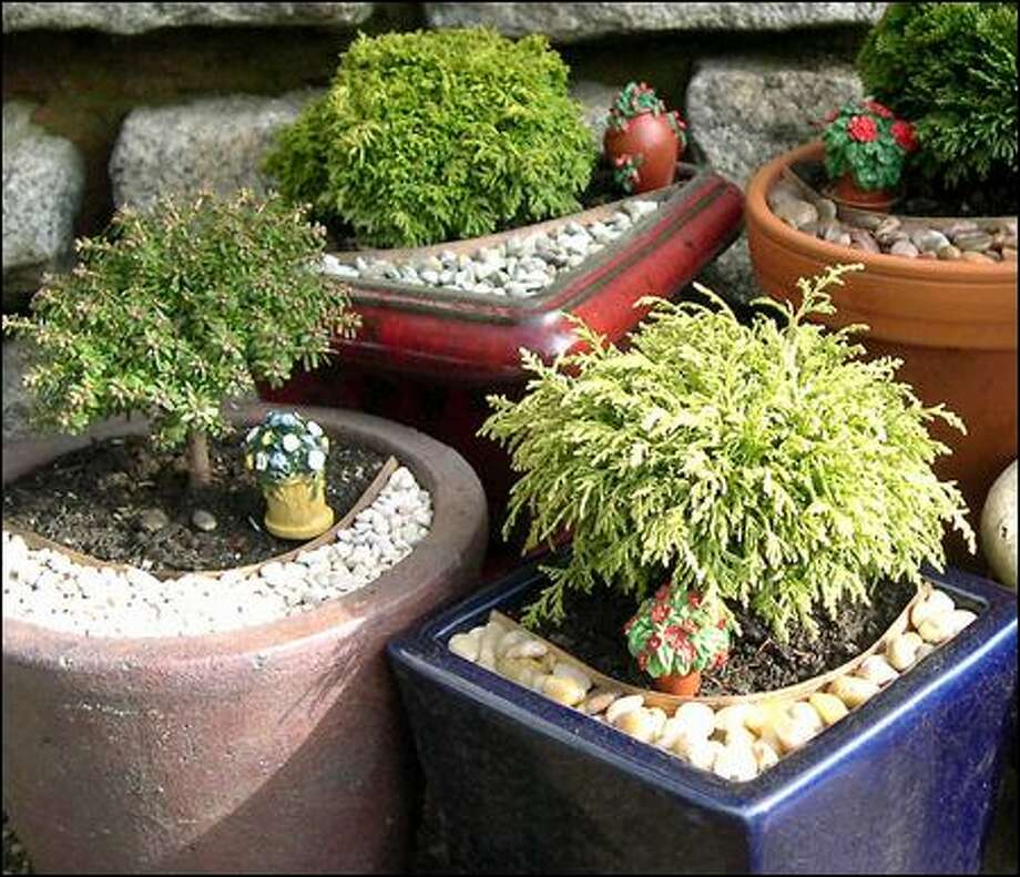 Two Green Thumbs Miniature Garden Quick Kits don't include pots and soil. Photo: Janit Calvo