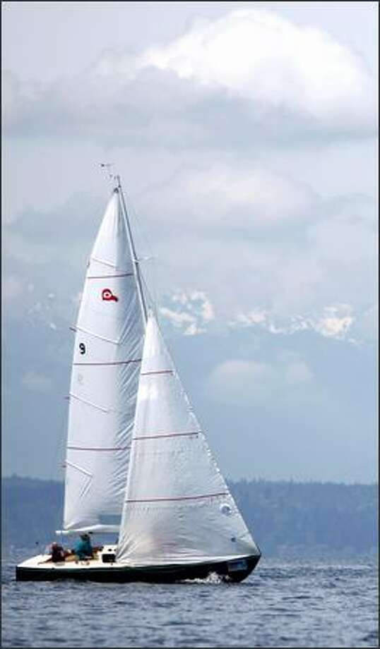Fandango, a Thunderbird, races. Photo: Clifford DesPeaux, Seattlepi.com