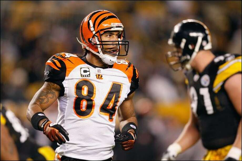 d0350575b T.J. Houshmandzadeh has averaged 98 receptions the past three seasons with  the Bengals. Photo