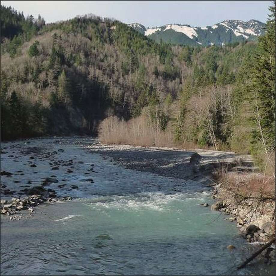 The Middle Fork of the Snoqualmie River. Photo: Karen Sykes/Special To The Post-Intelligencer