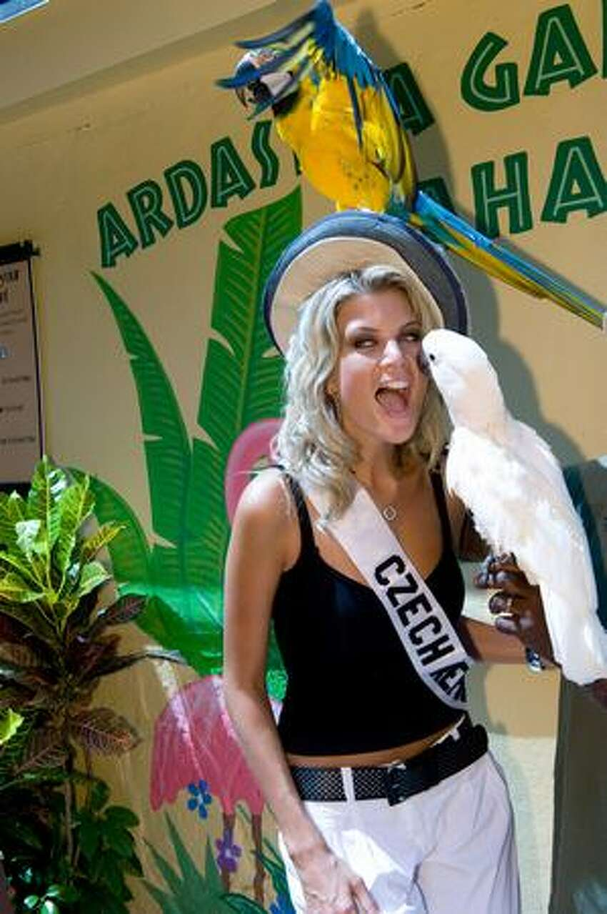 Iveta Lutovska, Miss Czech Republic, visits Ardastra Gardens, Zoo and Conservation Centre.